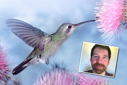 V těle vášeň, v srdci síla kolibříka